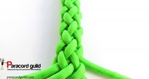 8-strand-gaucho-braid