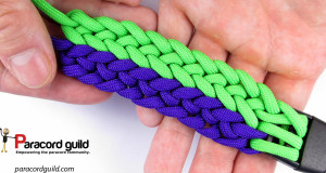 2-color-conquistador-braid-the-gemini