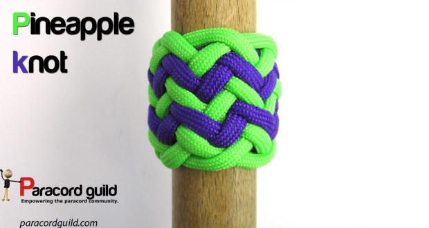 pineapple knot 12l12b