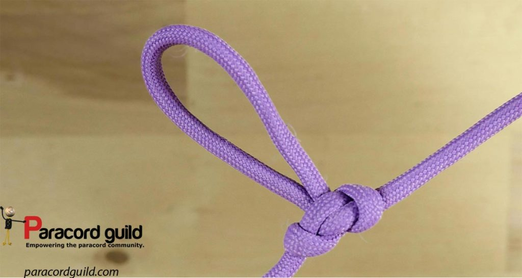 alpine-butterfly-loop-purple