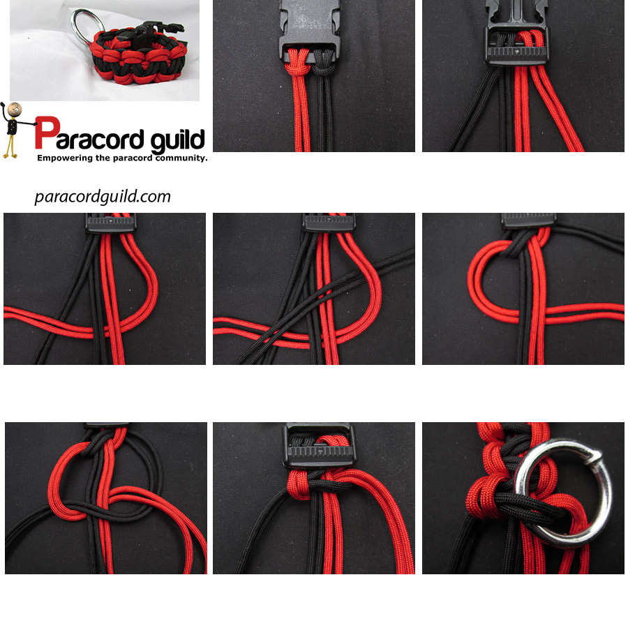 paracord  dog collar using a gorilla knot