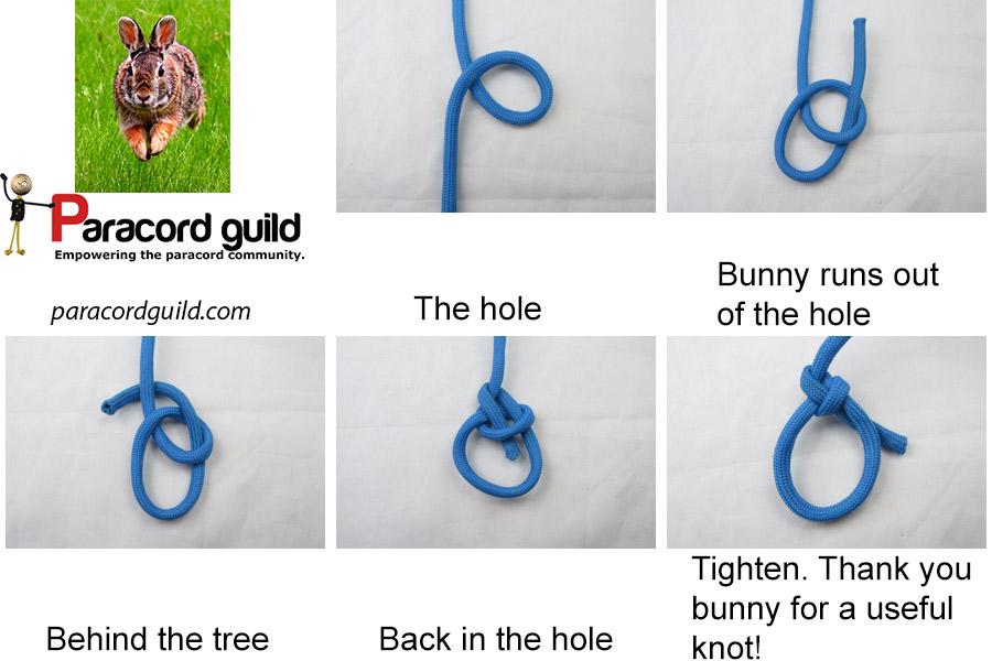 bowline knot bunny