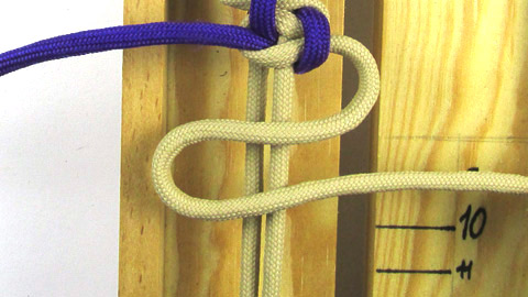 serpents-river-bar-tutorial-step-(9-of-13)